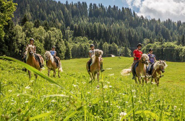 Reiten im Hofalmgebiet rund um die Bischofsmütze - Oberhofalm Filzmoos